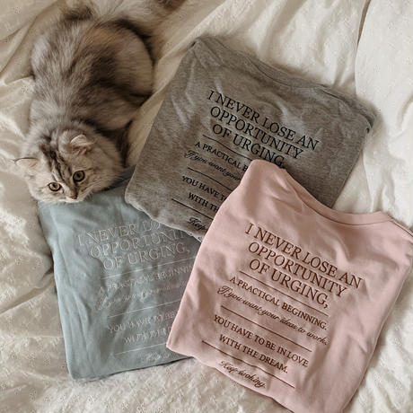 Love and Dream sweat (grey)
