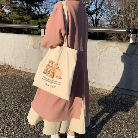 Treat cat tote bag