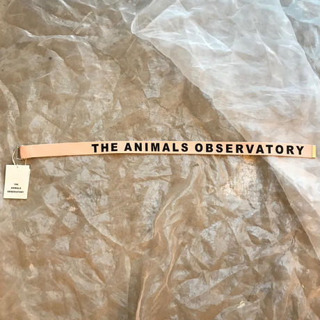 THE ANIMALS OBSERVATOY  LIZARD BELT Msize