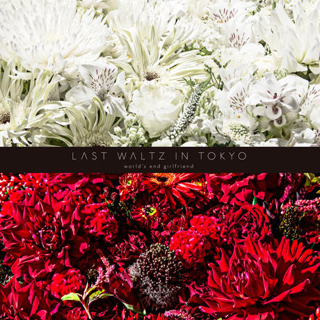 【花束+音楽DLコード+CD】Close to you + LAST WALTZ IN TOKYO[2CD] / world's end girlfriend & arbluem【C】