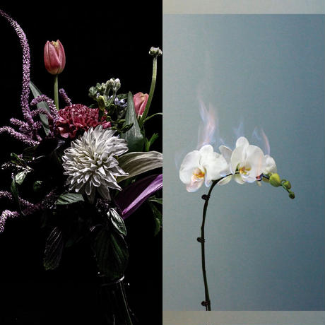 【花束+音楽DLコード+CD】Close to you + LAST WALTZ[CD] / world's end girlfriend & arbluem【B】