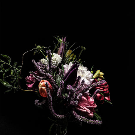 【花束+音楽DLコード+CD】Close to you + LAST WALTZ[CD]  / world's end girlfriend & arbluem【A】
