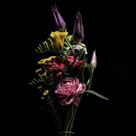 【花束+音楽DLコード+CD】Close to you + MEGURI[CD] / world's end girlfriend & arbluem【C】