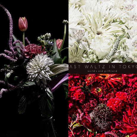 【花束+音楽DLコード+CD】Close to you + LAST WALTZ IN TOKYO [2CD] / world's end girlfriend & arbluem【B】