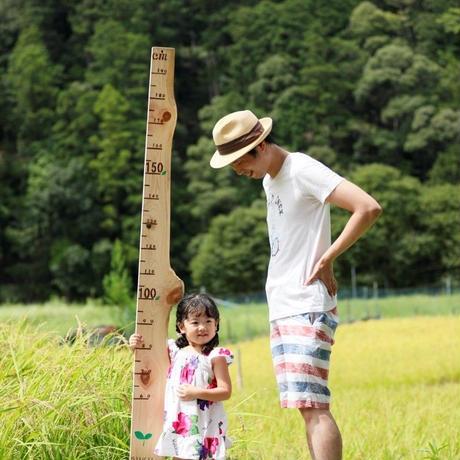 身長計「SUKU SUKU」~紀州ひのき~(名入・日付入オプション付) 100cm