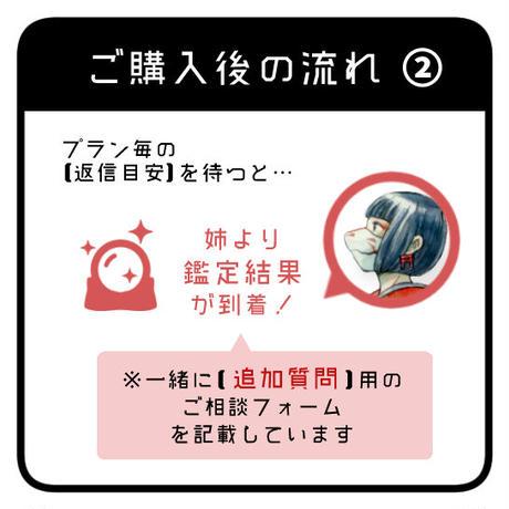 * 金狐(KINKO):本格鑑定 ※質問5個+1回追加質問が可能