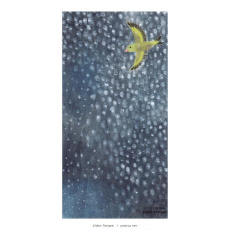 とりごえまり「雪の日に星を降らせた黄色いコトリ」大判カード