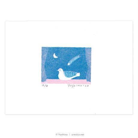芳野「夜の音」*シート