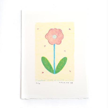 芳野「hana+pink」*シート