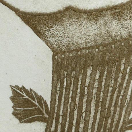 さかたきよこ 銅版画「花とお馬」