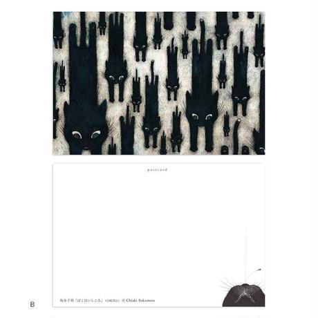 坂本千明「ぼくはいしころ」ポストカード