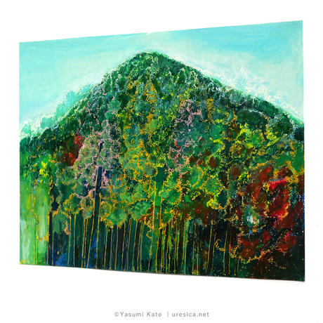 加藤休ミ「杉の森」