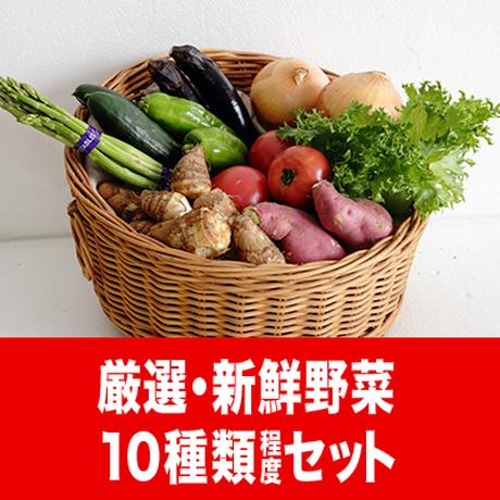うりぼう野菜セット3000
