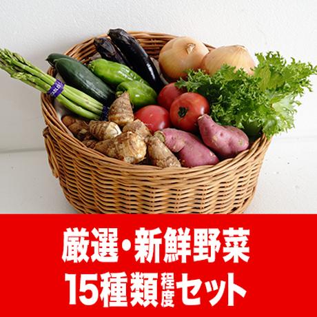 うりぼう野菜セット4000