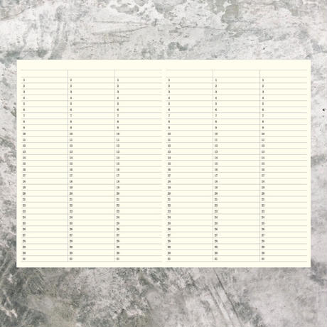 A4サイズ 5年ひとこと日記 ローズピンク 1冊