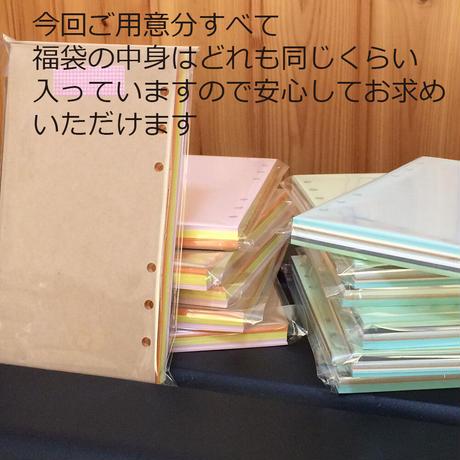 バイブルサイズ 【特価】無地で薄手のシステム手帳リフィル310g