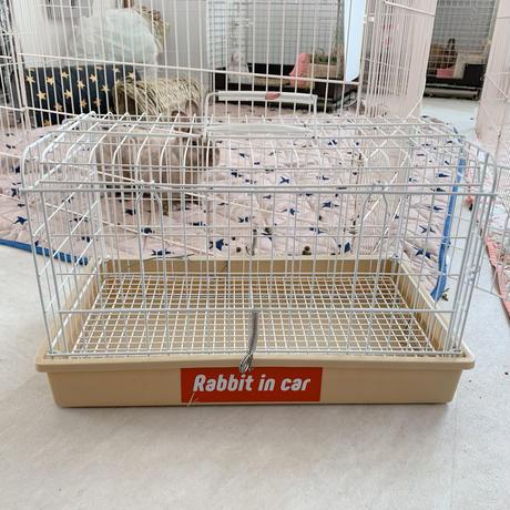 Rabbit in Car  moji ステッカー[Sticker for  cars]