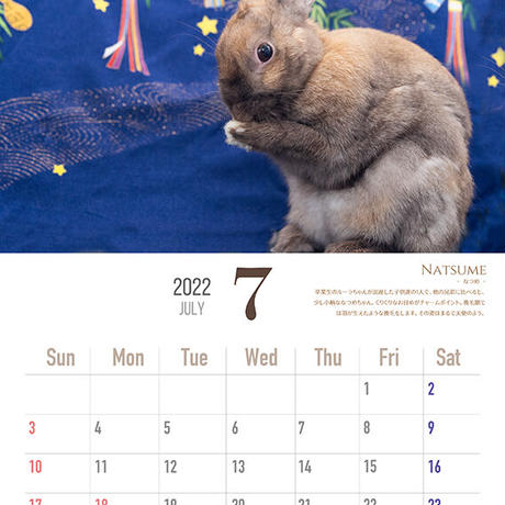SAVE THE RABBITS チャリティカレンダー2022