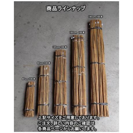 天然竹 女竹 60cm100本