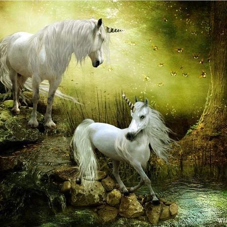 精霊タロット占い*unicorn*鑑定3件&アドバイス