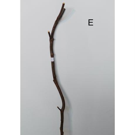 ENTOHO, TARP POLE  (A~E)