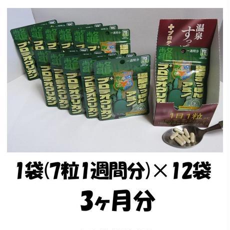 【お得】温泉すっぽんアミノ+プロテオグリカン/3か月分 (12袋セット)
