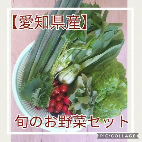 【愛知県産】旬のお野菜セット