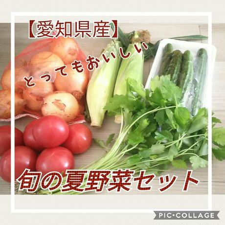 【愛知県産】旬の夏野菜セット