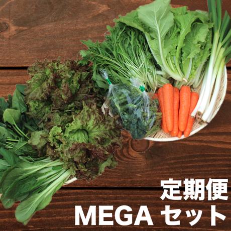 【定期便】Veggieこだわり野菜セット MEGAサイズ 8品目~(7~8人分)