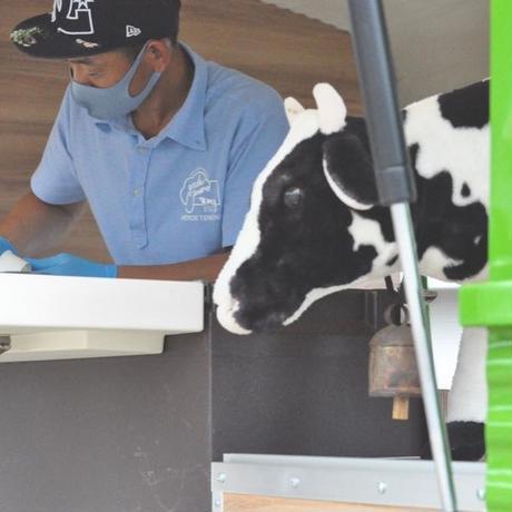 シラギク牛乳ジェラート12個セット(保冷セット込み) 6月19日以降到着指定できます