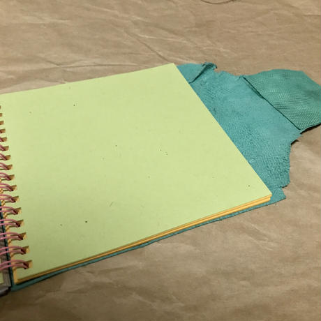 Waku Waku ⭐︎dream future notebook