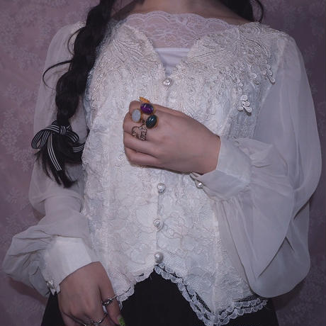 Sheer Sleeve Embroidery Blouse