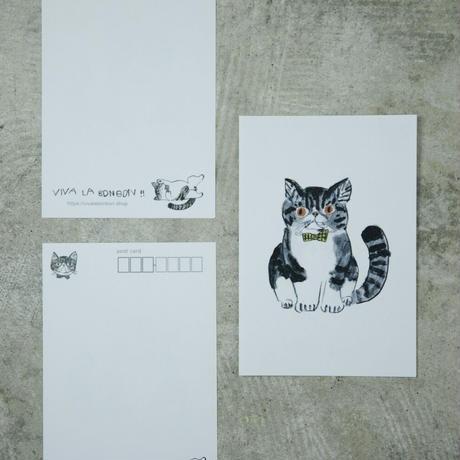 VIVA LA BONBON!! オリジナルポストカード