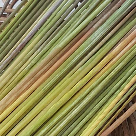 ライ麦の藁 ヒンメリ用 Sサイズ 約50本 自家自然栽培2020年産