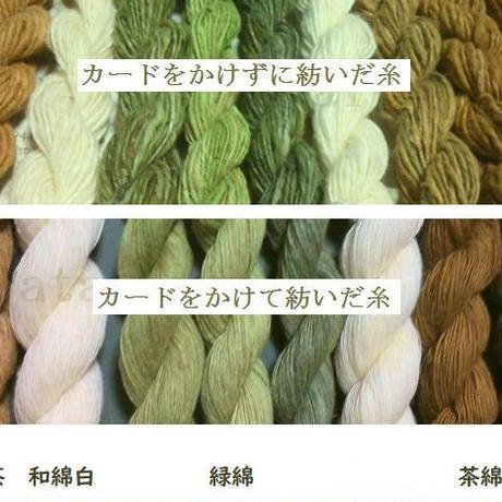綿の繊維(種採り済)各色  約10g 無農薬・無施肥・不耕起草生栽培