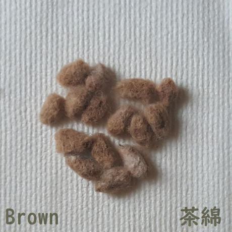 綿の種(タネ) 2020年産 各色15粒 無農薬・無施肥・不耕起草生栽培