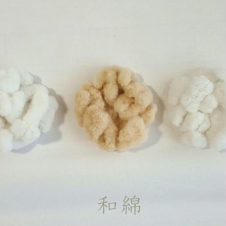 2019年産実綿 和綿 約10g 無染色・自家自然栽培綿