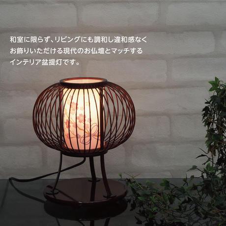 姫あかり(タメ塗)  【 回転筒付き】