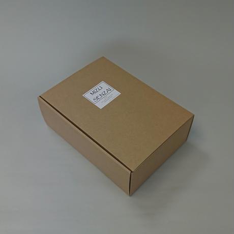 贈答用 ナノソル CC 300ml 代替容器セット