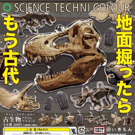STC 古生物アクリルマスコット