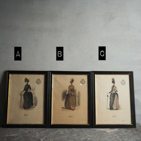 貴婦人のフレーム  A,B,C