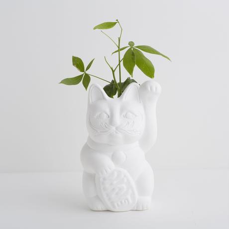 Plaster pot / Maneki cat