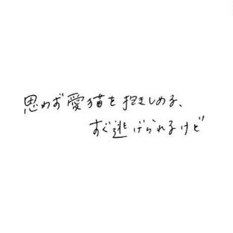 omiyu 文庫  企画・書籍「 猫にかまけて / 町田康 」
