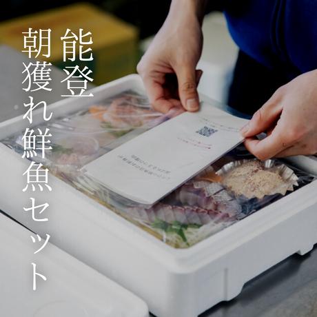 【究極のペアリング産直シリーズ・4月】能登の朝獲れ鮮魚セット×NOTO1本セット(1-2人前)[185]