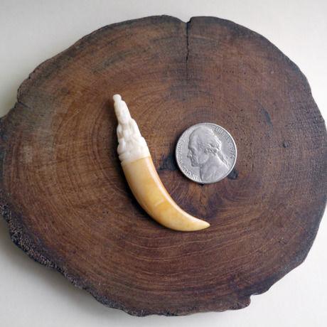 イノシシの牙/観音菩薩