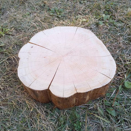 薪割り台 切り株 ひのき 丸太 約31x30cm 厚さ約10cm
