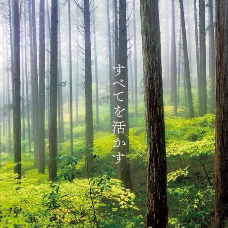 土佐龍 杉の弁当箱 180×90×60mm