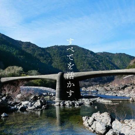土佐龍 ひのきキャニスター3段 115×130×365mm