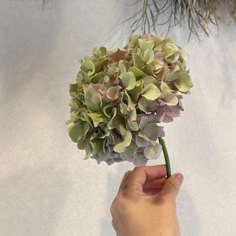 【 WILL GARDEN × Save the Flower farm 】Vol.2