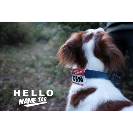 5001 HELLO NAMETAG RED ハローネームタグ レッド